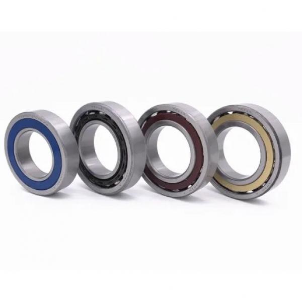Toyana NP30/530 E cylindrical roller bearings #3 image